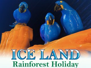 Holiday Events at Moody Gardens – A fun, engaging and delicious ...